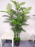 Piante artificiali di buona qualità di piccola palma Gu-FF-7tr-S. Palma