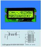 LCD van het Karakter van Backlight Stce16204 Vertoning voor Instrument