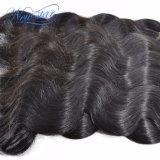 Whoalesale органа Виргинских кривой бразильского Сен Реми человеческого волоса добавочный номер