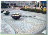 Los cubos del granito de la calzada pavimentan la piedra del adoquín en gris/negro/color rojo/amarillo para la venta