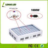 1200W 1000W 800W 600W 300W Usine de puces double Indoor croître Kit de lumière à spectre complet de lampes à effet de serre de plus en plus de floraison des plantes médicinales