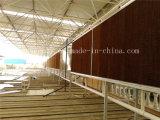Cortina mojada evaporativa/pista de enfriamiento de la pared/del enfriamiento para la casa verde