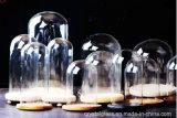Accueil Décoration de bureau micro paysage fleur immortelle Couvercle en verre transparent avec tapis en bois