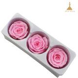 Têtes de 6~7cm 3 Anniversaire de mariage fleur rose boîte cadeau préservé
