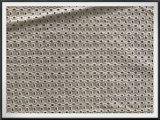 Tela do bordado do algodão para o vestido de Fation