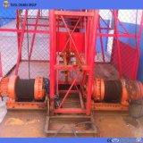Élévateur matériel de Ss100/100 1ton