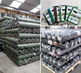 Barrière de mauvaises herbes 100g de tissu pour la plantation Buleberry