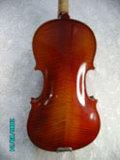 Violino (JAV008)