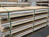 6063 verdrängte Aluminium-/Aluminiumlegierung-Platte /Sheet Casted//gerollt