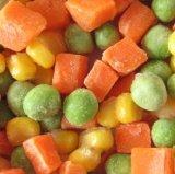 Manière mélangée congelée du légume congelée par légumes 3 d'aliments surgelés