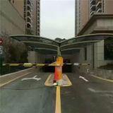 Pabellón del coche del policarbonato/toldo /Car del coche vertido/Carport del acceso de coche