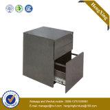 Armoire de dépôt en métal en acier plaqué en poudre (bibliothèque, étagère) (HX-5104MT)