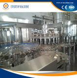 Завод фруктового сока разливая по бутылкам