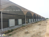 Telhado de parede Ventilador Axial Ventilador de refrigeração de ventilação de exaustão