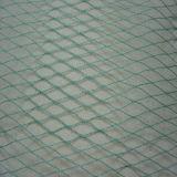 Beste Qualitätsantivogel-Netz hergestellt in China