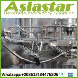Автоматическое цена машинного оборудования завалки бутылки Monoblock 4000bph 3-5L