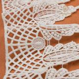 Merletto popolare dell'elastico del cotone/nylon/poliestere