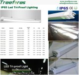 60W 1500mm LED 고정편 빛 IP65 세 배 증거 점화 램프