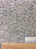 Туманные плитки гранита Mauve G664 для Countertop пола/стены/кухни