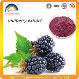Extrait de fruit de mûre