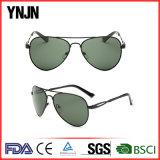 Novo e elegante de alta qualidade Ynjn forma polarizada homens óculos (YJ-F8425)