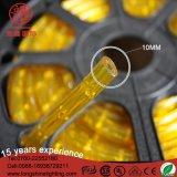 LED 방수 노란 백색 100m Buliding 훈장을%s 빛 60 FT LED 밧줄