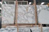 イタリアBianco白いStaturio Calacattaの大理石の平板