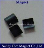 De aangepaste Magneet van de Boog in Op hoge temperatuur
