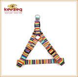 El correo del collar de la impresión del gato del perro de la calidad, harness/más colorea disponible (KC0109)