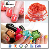 Nail Polish At all Pigment, Colorful Pearl Pigment for Makeup
