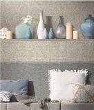 Не матовая поверхность скольжения полированной плиткой из фарфора на пол и стены