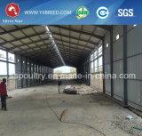 192-288 jaula de la capa de la capacidad para la granja grande
