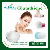 Fuente a granel Gsh/L-Glutatión de Gssg para blanquear los cosméticos