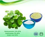 Extrait de Centella asiatica acide asiatiques