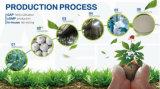 Polvo Allicin 1%-6% del Extracto del Ajo de las Anti-Bacterias/del Ajo de HPLC 5: 1., 10:1