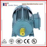 Motor asíncrono de la inducción de la CA de Yx3-100L2-4 50Hz para la maquinaria de envasado