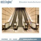 Levage en verre d'ascenseur de bel escalator de sûreté