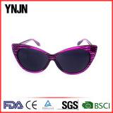 Occhiali da sole di plastica del gatto della novità della Cina del Buy all'ingrosso per le signore