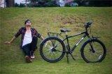 """이동할 수 있는 수화물 운반대 쇠사슬 자전거 26 """" 뚱뚱한 여행 자전거"""
