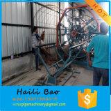 máquina de soldar de gaiola de aço para betão Pole Tubo /
