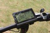 Bici gorda eléctrica verde /36V 250W de la protección del medio ambiente plegable Ebike