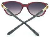 F17244 Dama de Qualidade com novo design de moda para óculos de mulheres óculos de sol