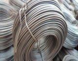 Petit fil galvanisé de bobine/petit fil de bobine