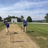 Плотность 75600 10мм высота тона для игры в крикет искусственных травяных синтетическим покрытием