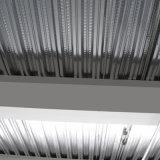 Rodillo del Decking del suelo de acero del metal que forma la máquina