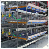 Galvanized caldo Bird Layer Cage per Hot Sale in Africa