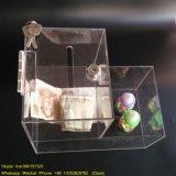 De naar maat gemaakte Transparante AcrylDoos van de Schenking