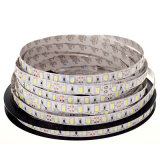 LED 12/24 V 5050SMD LED Strip Light lumière à LED