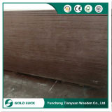 madera contrachapada Shuttering hecha frente película negra de 17mm*1220*2440m m