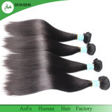 Peruvian Straight Thick To hate Natural Color Fine&Sleek Human To hate